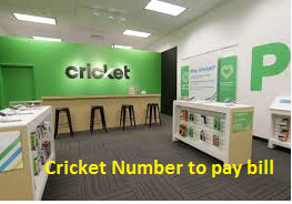 Cricket Number