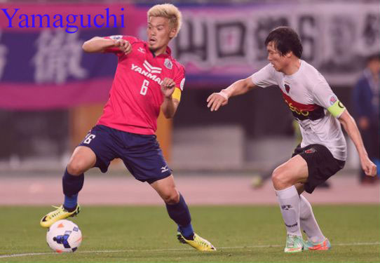 Hotaru Yamaguchi footballer