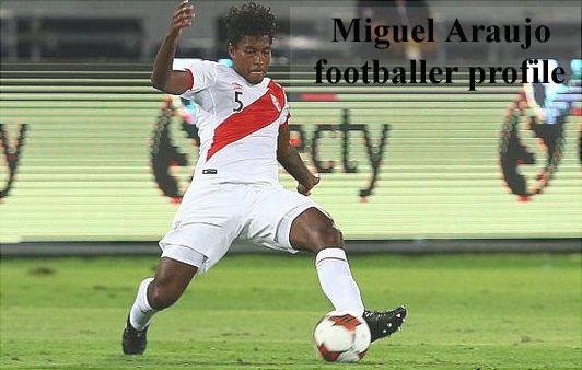 Miguel Araujo profile