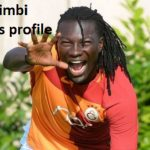 Bafetimbi gomis profile, wife, parents, celebration, family and club career