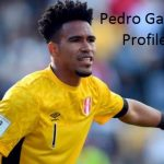 Pedro Gallese profile