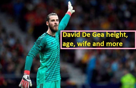 David De Gea height