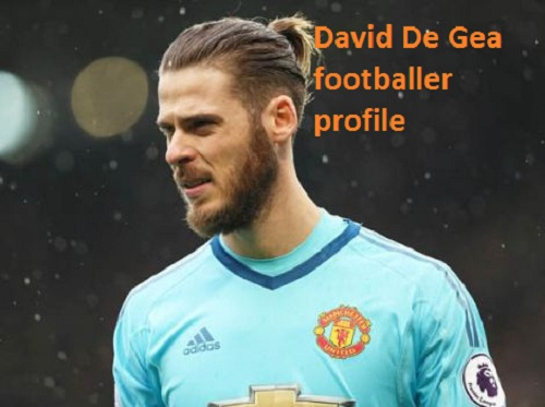 024fe5e93c2 David De Gea profile
