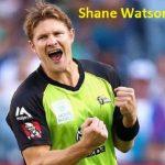 Shane Watson cricketer
