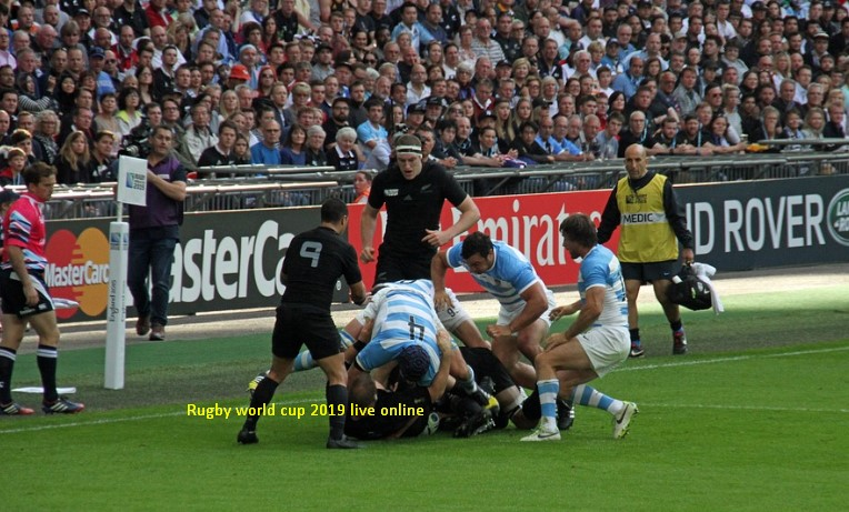 rugby world cup semi final 2019