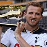 Harry Kane footballer profile