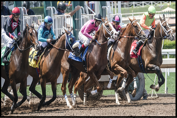 2021 Kentucky Derby February Leaderboard: Essential Quality Tops Poll